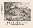 Joris Van Grieken Maarten  Bassens,Bruegel in zwart en wit