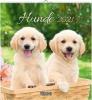 Hunde 2021, aufstellbarer Postkartenkalender