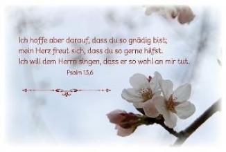 Werth, Jürgen Deine Gebete aus den Psalmen