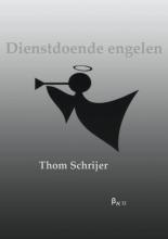 Thom  Schrijer Bordeauxreeks Dienstdoende engelen