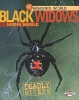 Markle, Sandra,Black Widows