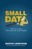 Lindstrom, Martin,Small Data