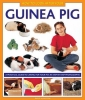 Alderton, David,How to Look After Your Guinea Pig