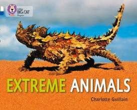 Charlotte Guillain Extreme Animals