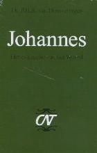 P.H.R. van Houwelingen , Johannes