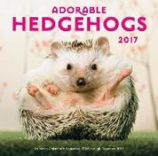 Adorable Hedgehogs 2017 Calendar