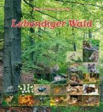 Fischer-Nagel, Heiderose Lebendiger Wald