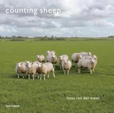 Hans van der Meer Counting sheep