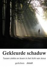 Jessah Groenink , Gekleurde schaduw