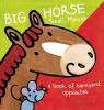 Slegers, Liesbet,Big horse small mouse