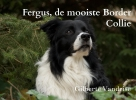 Gilberte Vandrise ,Fergus, de mooiste Border Collie