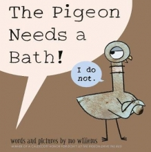 Willems, Mo Pigeon Needs a Bath