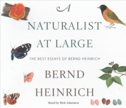 Heinrich, Bernd A Naturalist at Large