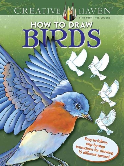 Marty Noble,Creative Haven How to Draw Birds