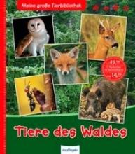 Gomel, Luc Meine große Tierbibliothek: Tiere des Waldes