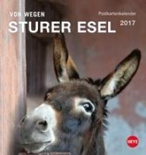 Esel 2017. Postkartenkalender