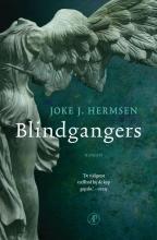 Joke J.  Hermsen Blindgangers