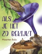 Maarten Buijs , Als je het zo bekijkt