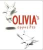 Falconer, Ian,Olivia's Opposites