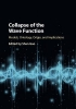 ,Collapse of the Wave Function