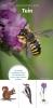 ,Natuurwijzer Tuin - zoekkaart, herkenningskaart