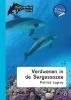 <b>Patrick  Lagrou</b>,Dolfijnenkind Verdwenen in de Sargassozee - dyslexie uitgave