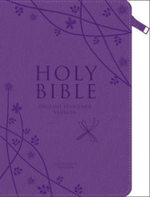 Collins Anglicised ESV Bibles Holy Bible: English Standard Version (ESV) Anglicised Purple Compact Gift edition with zip