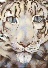 Morris, Jackie Jackie Morris Snow Leopard Poster