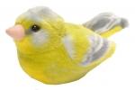 ,<b>Vogel met geluid groenling</b>