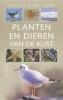 Michael Lohmann, Deltas gids voor planten en dieren van de kust
