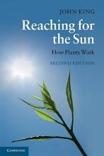 John King Reaching for the Sun
