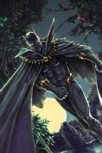 Priest, Christopher J. Black Panther