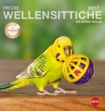 Freche Wellensittiche 2017. Postkartenkalender