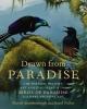 Attenborough, David,   Fuller, Errol,Drawn From Paradise