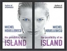 Houellebecq, Michel,The Possibility of an Island