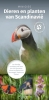 <b>Minigids dieren en planten van Scandinavie</b>,een handige vouwkaart met meer dan 150 dieren en planten van Noorwegen, Zweden en Finland