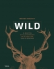 Bruno  Doucet,Wild