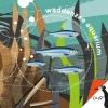 Lisa  Sportel ,Okapi Waddenzeeaquarium (set van 5)