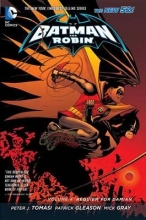 Tomasi, Peter J. Batman and Robin 4