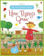 Bonnet Brooks, My First Book About How Things Grow Sticker Book