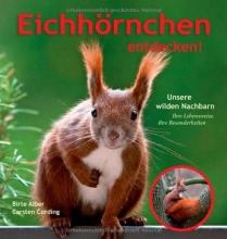 Cording, Carsten Eichhörnchen entdecken!