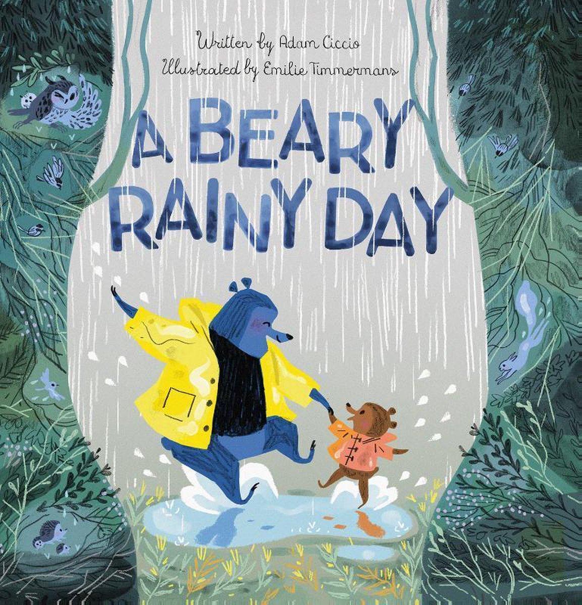 Adam Ciccio,A Beary Rainy Day