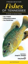 Freshwater Fishes of Tennessee