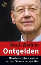 Nout Wellink , Ontgelden