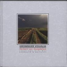 Eric Bos , Groninger Visualia