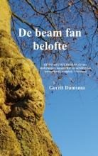 Gerrit  Damsma De beam fan belofte