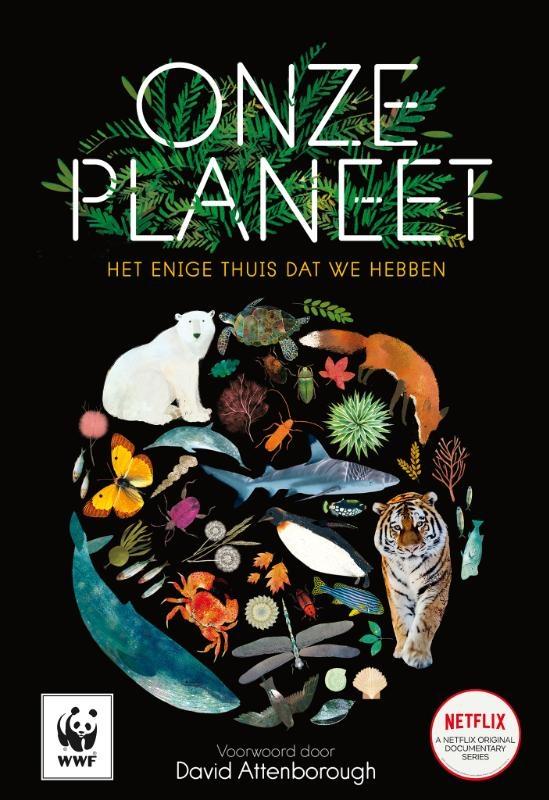 Matt Whyman,Onze planeet