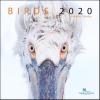 ,Birds maandkalender 2020, vogelbescherming