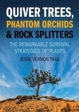 Trail, Jesse Vernon Quiver Trees, Phantom Orchids and Rock Splitters