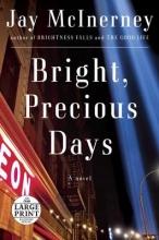McInerney, Jay Bright, Precious Days